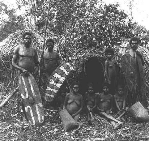 Rainforest Aboriginal People C1890 Queensland