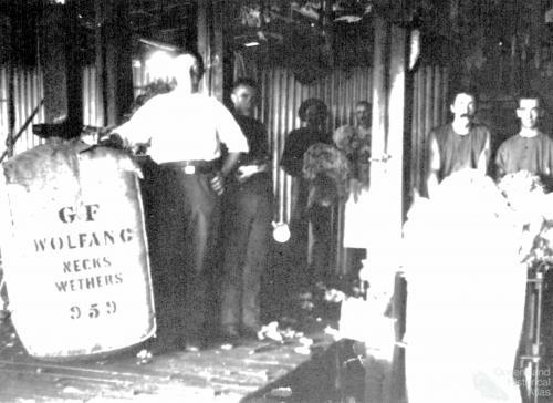 Baling the wool clip at Logan Downs Shearing Shed, 1890s