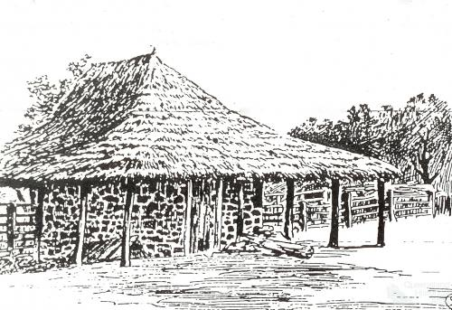 Alice River Co-operative Settlement dairy, 1893