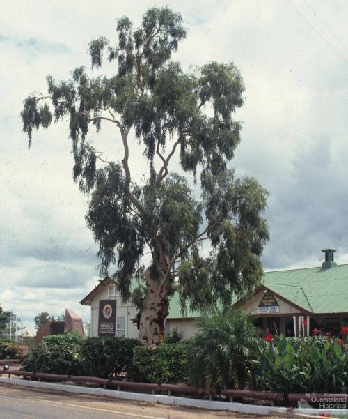 Tree of Knowledge, Barcaldine, 1991