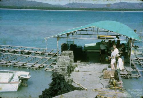 Pearling industry Torres Strait, 1965-66