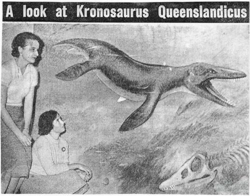 A look at Kronosaurus Queenslandicus, 1958