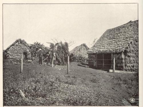 South Sea Islander huts, Childers, 1904