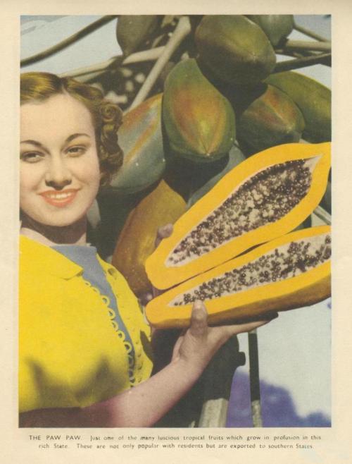 Paw paw and sunshine, 1950