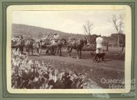 Carting prickly pear near Kingsthorpe, 1920s