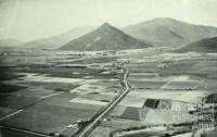 Aerial view of Gordonvale and surrounding cane farms, 1954