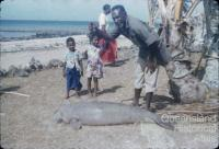Dugong hunting, Torres Strait, 1958