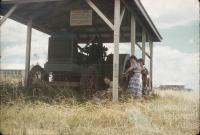 Jimbour House, 1958
