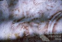 Aboriginal rock art, Carnarvon National Park, 1967