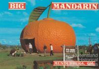 Big Mandarin, Mundubbera, c1984