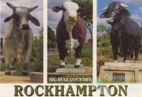 Big bull country, Rockhampton, c1988