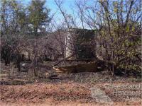 Stumps and corrugated iron tanks, Mungana