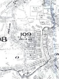 Cadastral map, miners homestead leases at Mount Shamrock, 1926