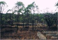 Mining town of Koorboora