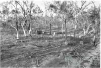 The small cemetery at Kingsborough