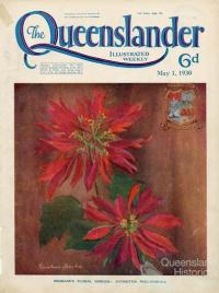 Brisbane's floral emblem, Poinsettia Pulcherrima, The Queenslander, 1930
