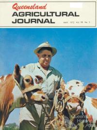 Twin Ayrshire-cross calves, Rocklea, 1972