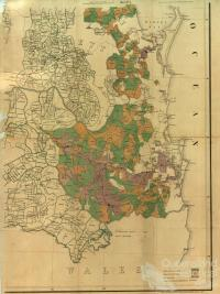 Map of the southern portion of the colony of Queensland showing the surveyed runs, 1872, Sheet 1