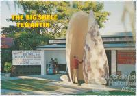 The Big Shell, Tewantin
