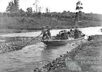 Chinese transporting bananas by punt, Innisfail, c1885