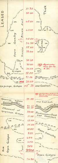 Rail survey plan depicting creek running with artesian water, 1895