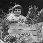 Girl sitting in a crate of Queensland pineapples, 1924