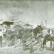 Elien George and wagonette, c1900
