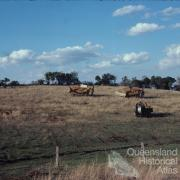 Laying telecommunication cable, Darling Downs, 1978