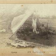 Camp at Tinnenburra, c1910