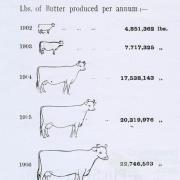 Progress of dairying, 1908