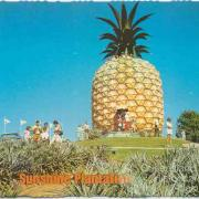The Big Pineapple, Woombye