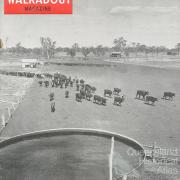 Walkabout cover, June 1955