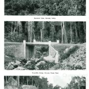Kirrama Range Road, Lumholtz, 1937