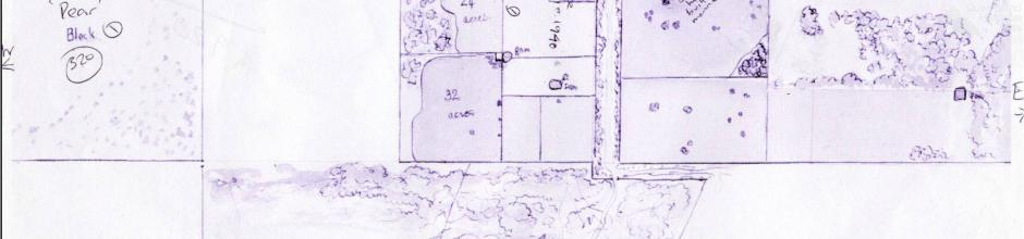 Map of the Macqueen farm, c1951