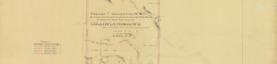 Cullin-la-ringo run, selection 67, 1877