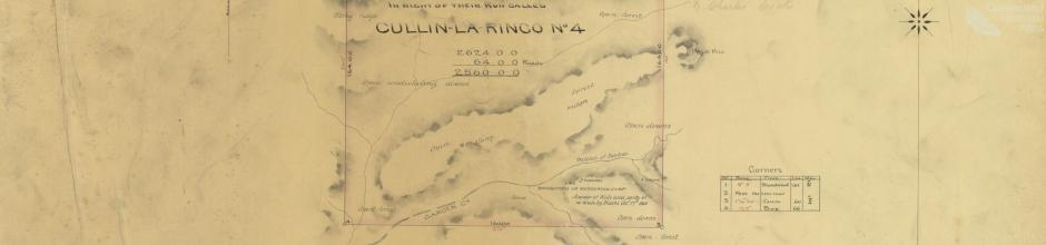 Cullin-la-ringo run, selection 68, 1877